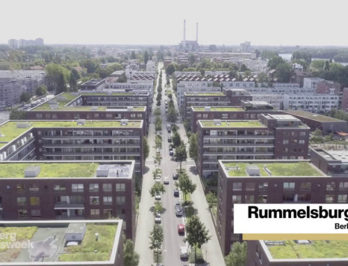 Green Roofs and Parks for Healthy Cities