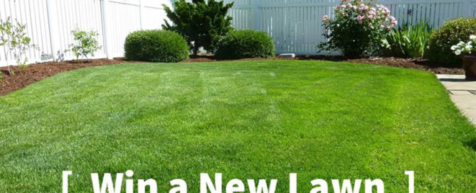 new lawn package
