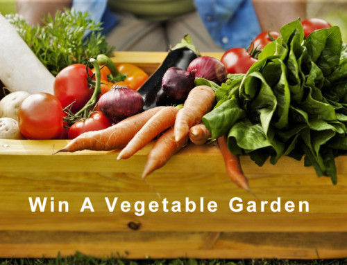 Contest – Win a Vegetable Garden Package ($100 Value)