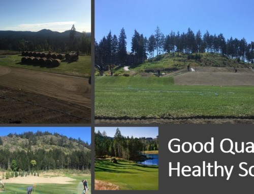 Good quality healthy sod gives premier golf experience at Bear Mountain