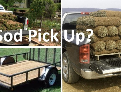 Sod Delivery or Sod Pick Up?